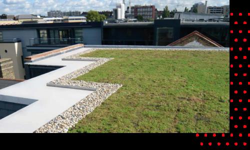 IKO roofgarden